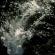 flyer_web_0